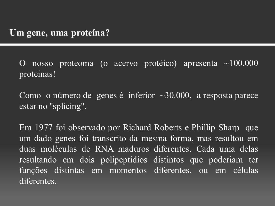 Um gene, uma proteína? O nosso proteoma (o acervo protéico) apresenta ~100.000 proteínas! Como o número de genes é inferior ~30.000, a resposta parece