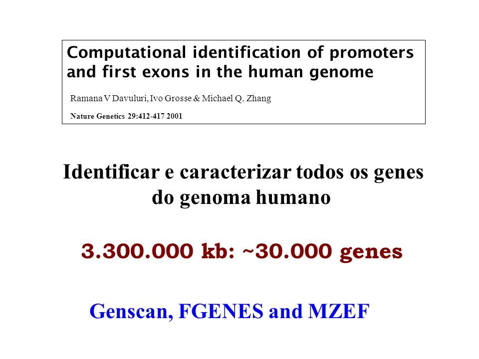 FEdb 2.139 Alinharam RNAm e 5 UTR com seqüências genômicas; Recupera o primeiro exon com 500 bases de cada lado; Elimina a redundância e as seqs ambíguas.