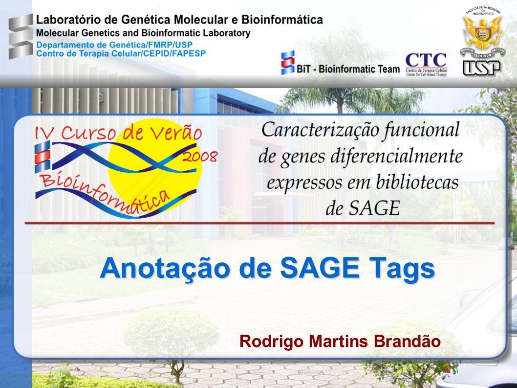 SAGE A Bioinformática têm papel essencial para o SAGE em três funções básicas: extração e gerenciamento dos dados anotação das tags análise estatística (distribuição e comparações)