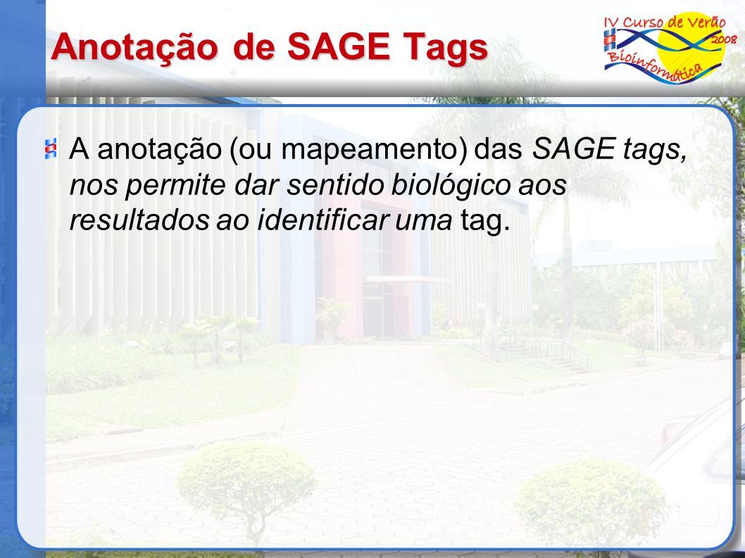Anotação de SAGE Tags A anotação (ou mapeamento) das SAGE tags, nos permite dar sentido biológico aos resultados ao identificar uma tag.