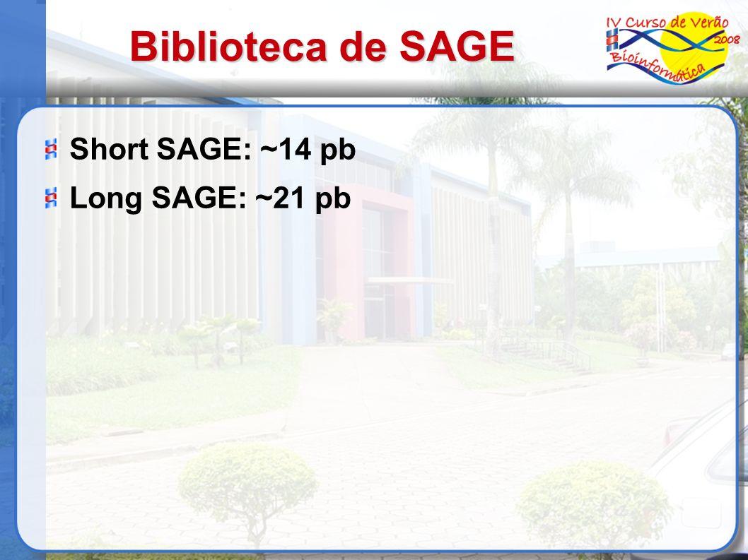 Biblioteca de SAGE Short SAGE: ~14 pb Long SAGE: ~21 pb