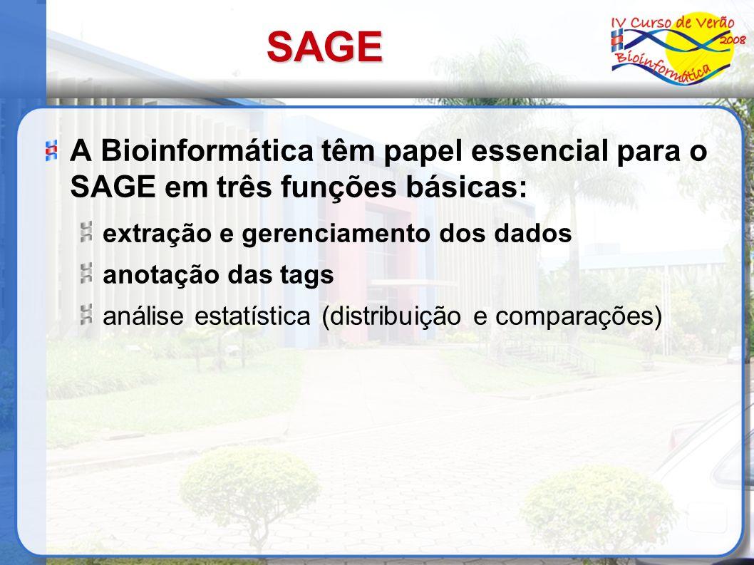 SAGE A Bioinformática têm papel essencial para o SAGE em três funções básicas: extração e gerenciamento dos dados anotação das tags análise estatístic