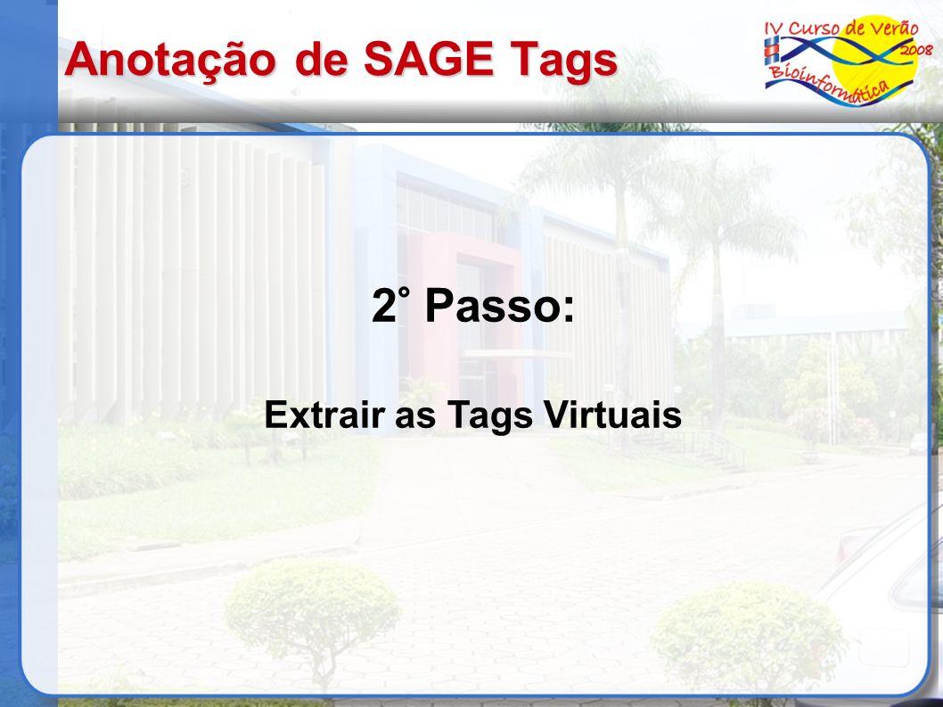 Anotação de SAGE Tags 2° Passo: Extrair as Tags Virtuais