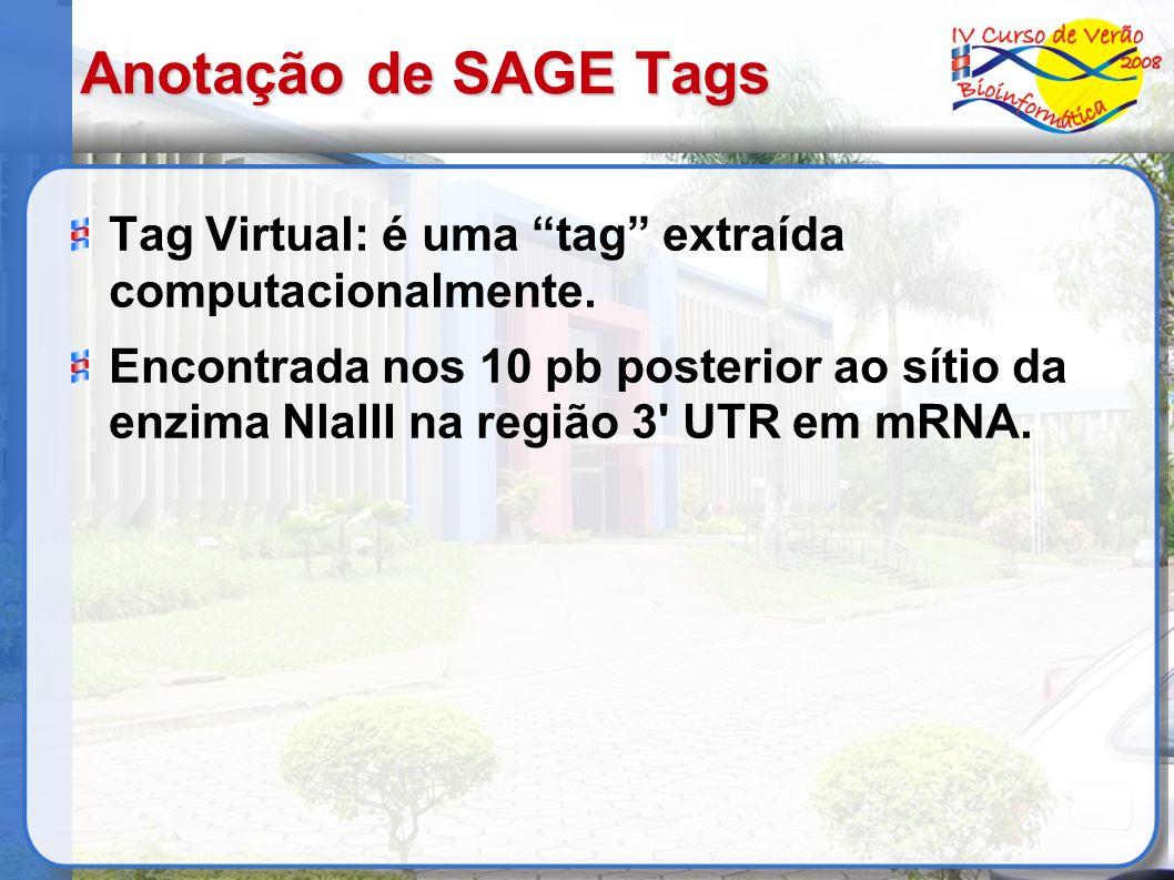 Anotação de SAGE Tags Tag Virtual: é uma tag extraída computacionalmente. Encontrada nos 10 pb posterior ao sítio da enzima NlaIII na região 3' UTR em