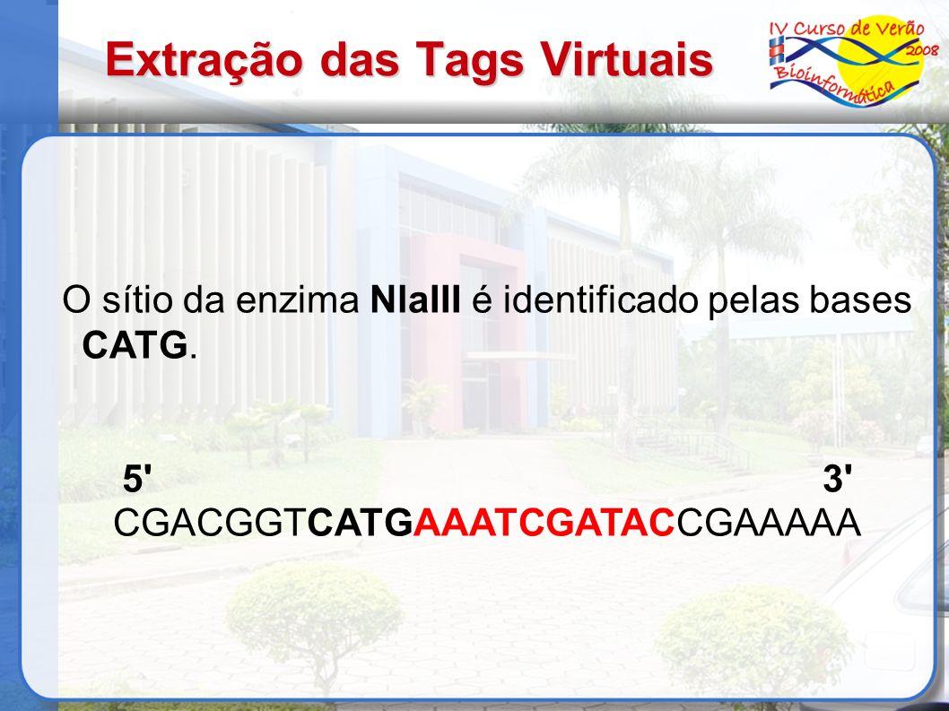 Extração das Tags Virtuais O sítio da enzima NlaIII é identificado pelas bases CATG. 5' 3' CGACGGTCATGAAATCGATACCGAAAAA