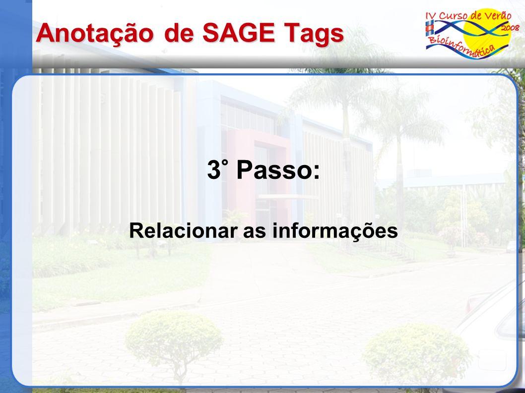 Anotação de SAGE Tags 3° Passo: Relacionar as informações
