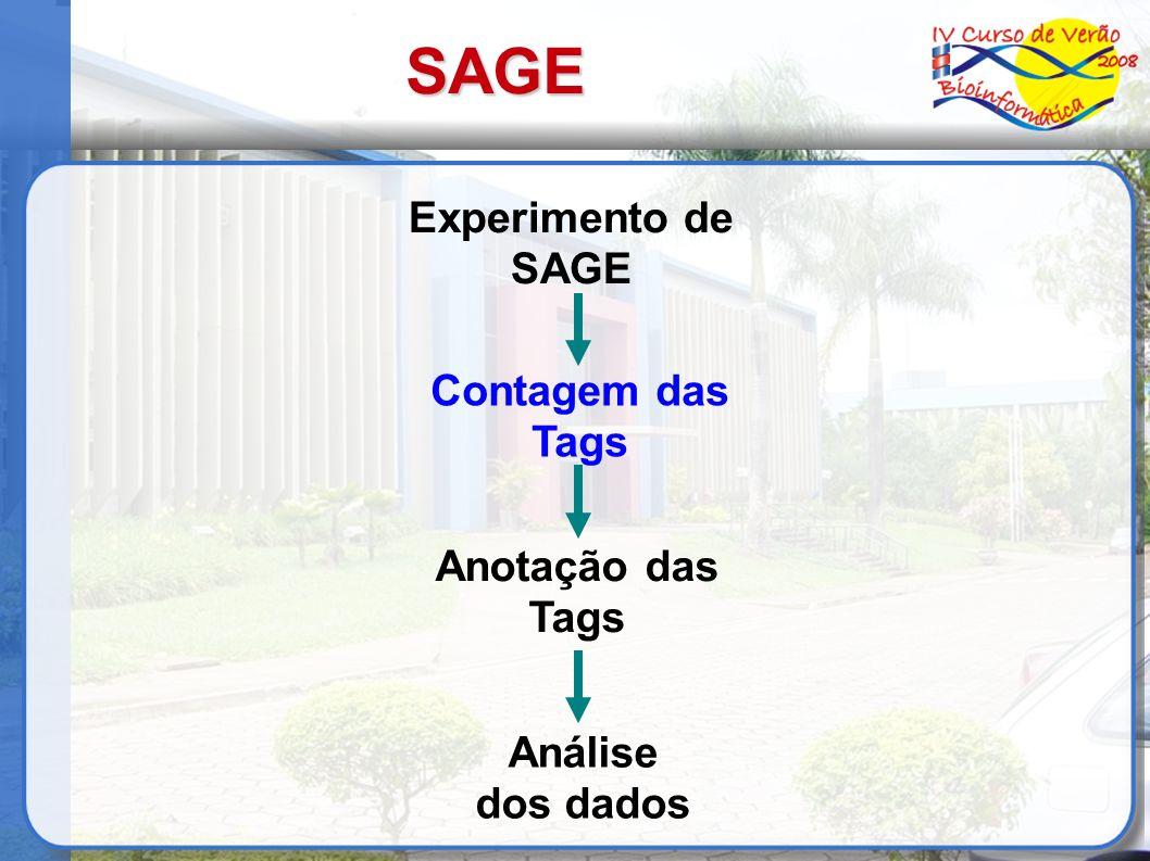 Extração das Tags Dados estão no formato de cromatogramas Software de Base Calling (Ex.: Phred) para gerar a sequência do concatâmero no formato texto com seu valor de qualidade Extração e contagem das tags