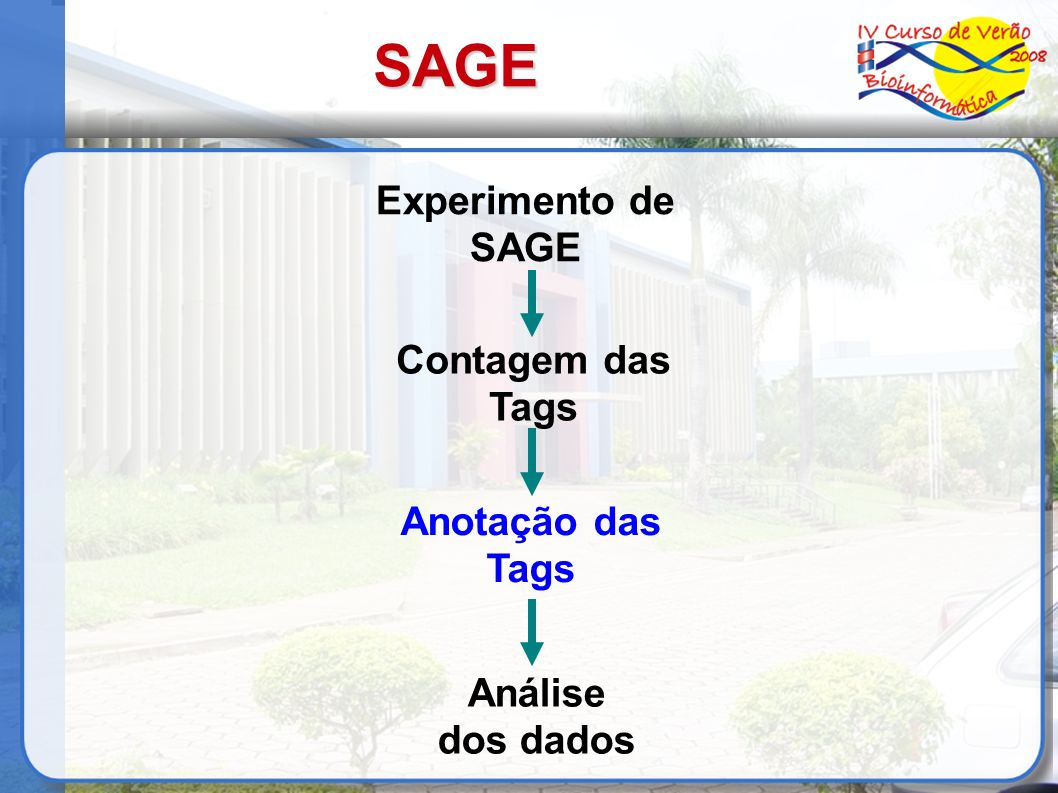 Biblioteca de SAGE Gerar a lista das CSTs (Confident SAGE Tag): Remover tags com frequência igual a 1; Remover linkers de sequências linkers com variação de 1pb AAAAAAAAAA – AAAAAAAAAT