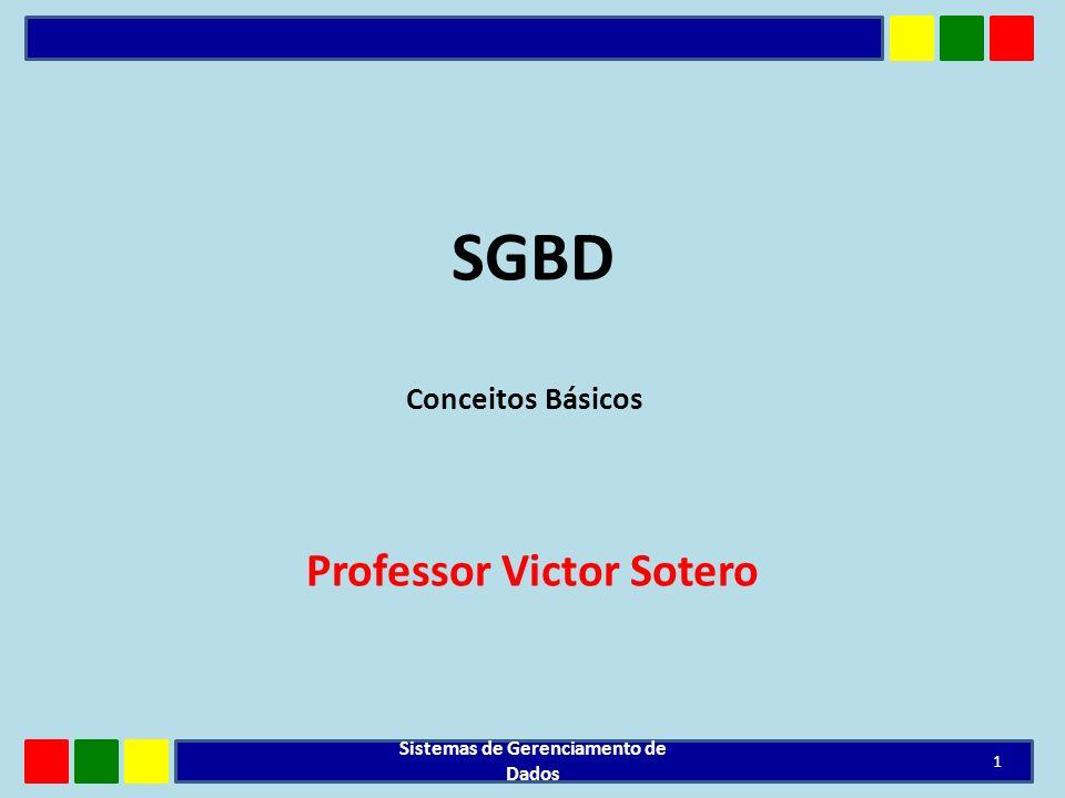 SGBD Professor Victor Sotero 1 Sistemas de Gerenciamento de Dados Conceitos Básicos