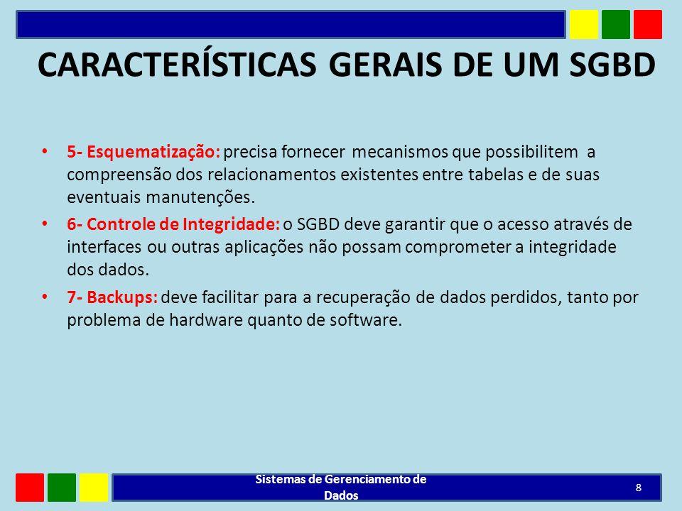 CARACTERÍSTICAS GERAIS DE UM SGBD 5- Esquematização: precisa fornecer mecanismos que possibilitem a compreensão dos relacionamentos existentes entre t