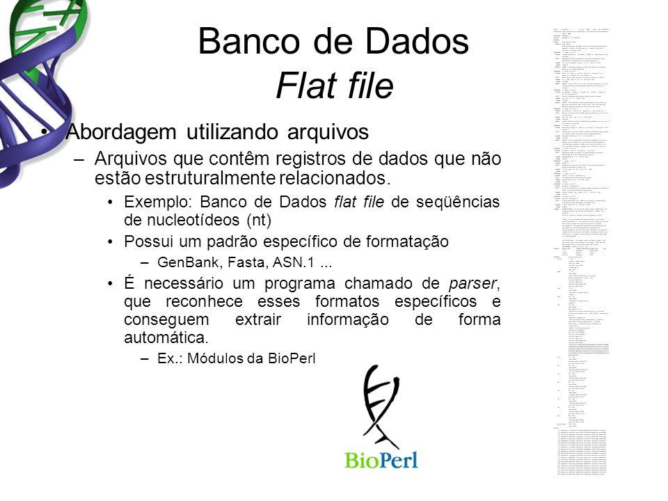 Banco de Dados Flat file Abordagem utilizando arquivos –Arquivos que contêm registros de dados que não estão estruturalmente relacionados. Exemplo: Ba