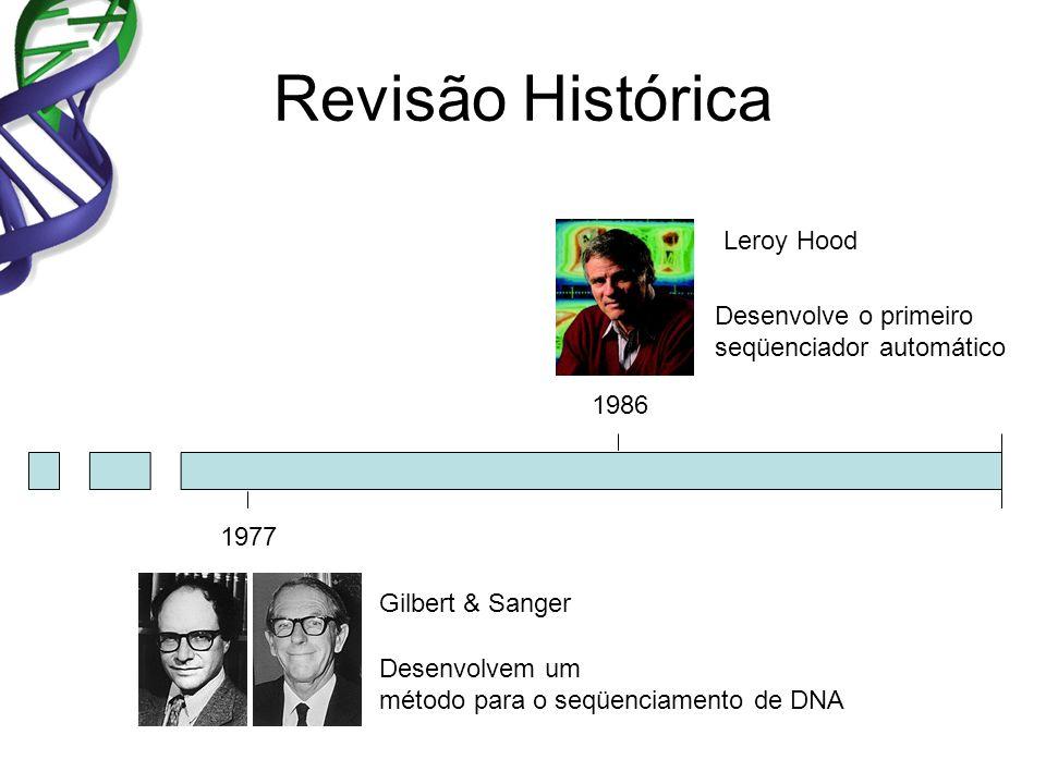 Revisão Histórica 1977 1986 Gilbert & Sanger Desenvolvem um método para o seqüenciamento de DNA Desenvolve o primeiro seqüenciador automático Leroy Ho