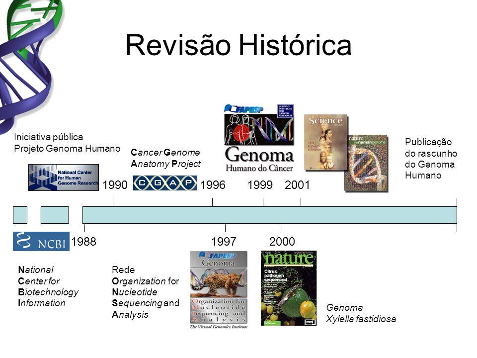Revisão Histórica Iniciativa pública Projeto Genoma Humano Publicação do rascunho do Genoma Humano 19902001 2000 Genoma Xylella fastidiosa 1997 Rede O