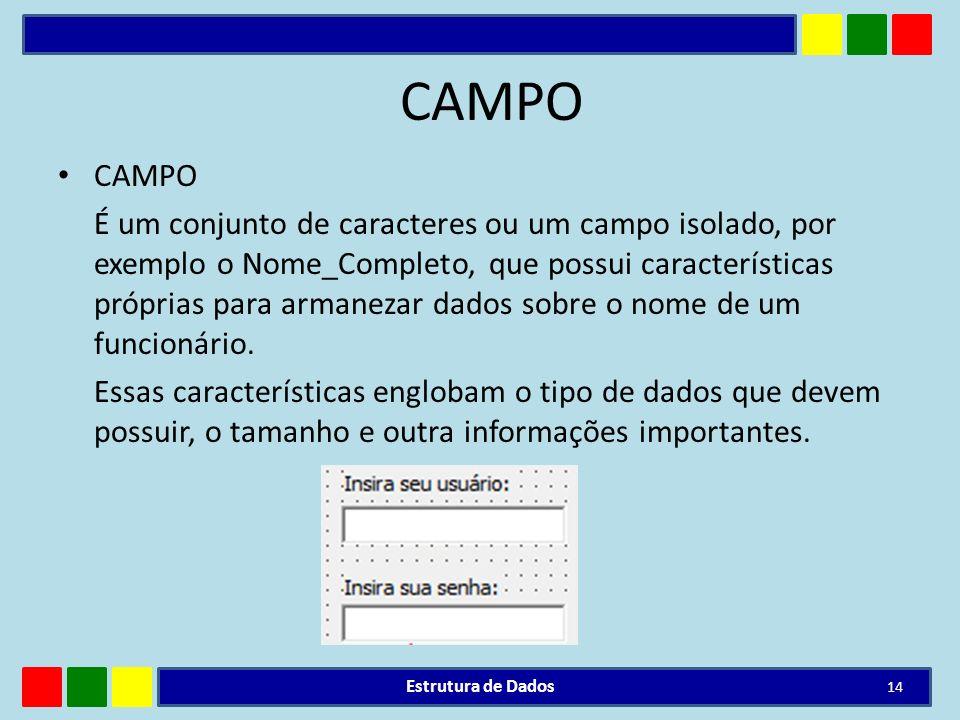 CAMPO É um conjunto de caracteres ou um campo isolado, por exemplo o Nome_Completo, que possui características próprias para armanezar dados sobre o n