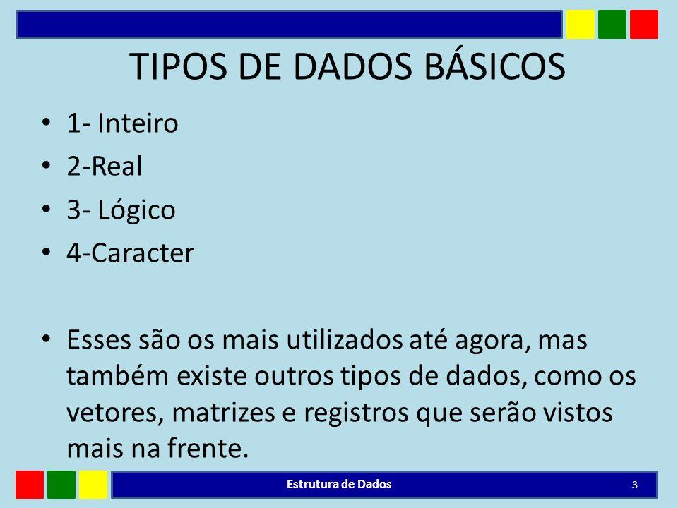 TIPOS DE DADOS BÁSICOS 1- Inteiro 2-Real 3- Lógico 4-Caracter Esses são os mais utilizados até agora, mas também existe outros tipos de dados, como os