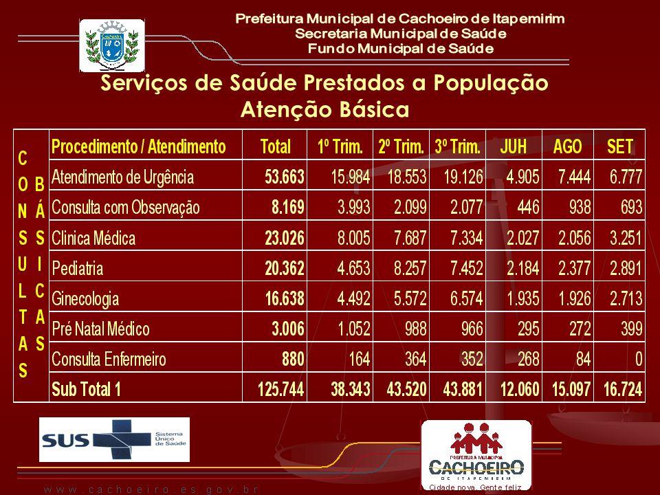 Serviços de Saúde Prestados a População Atenção Básica