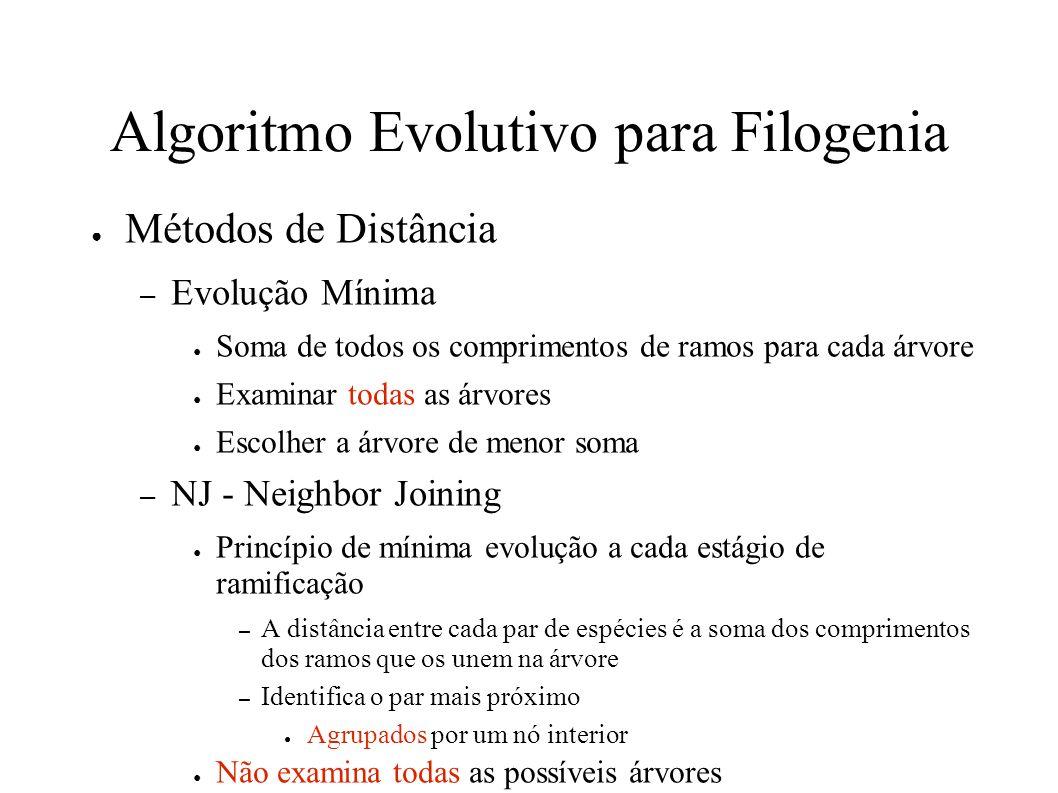 Algoritmo Evolutivo para Filogenia Métodos de Distância – Evolução Mínima Soma de todos os comprimentos de ramos para cada árvore Examinar todas as árvores Escolher a árvore de menor soma – NJ - Neighbor Joining Princípio de mínima evolução a cada estágio de ramificação – A distância entre cada par de espécies é a soma dos comprimentos dos ramos que os unem na árvore – Identifica o par mais próximo Agrupados por um nó interior Não examina todas as possíveis árvores