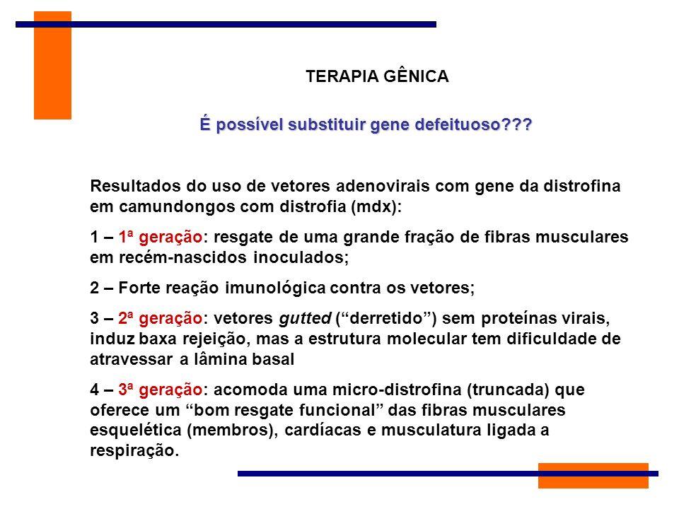 TERAPIA GÊNICA É possível substituir gene defeituoso??? Resultados do uso de vetores adenovirais com gene da distrofina em camundongos com distrofia (