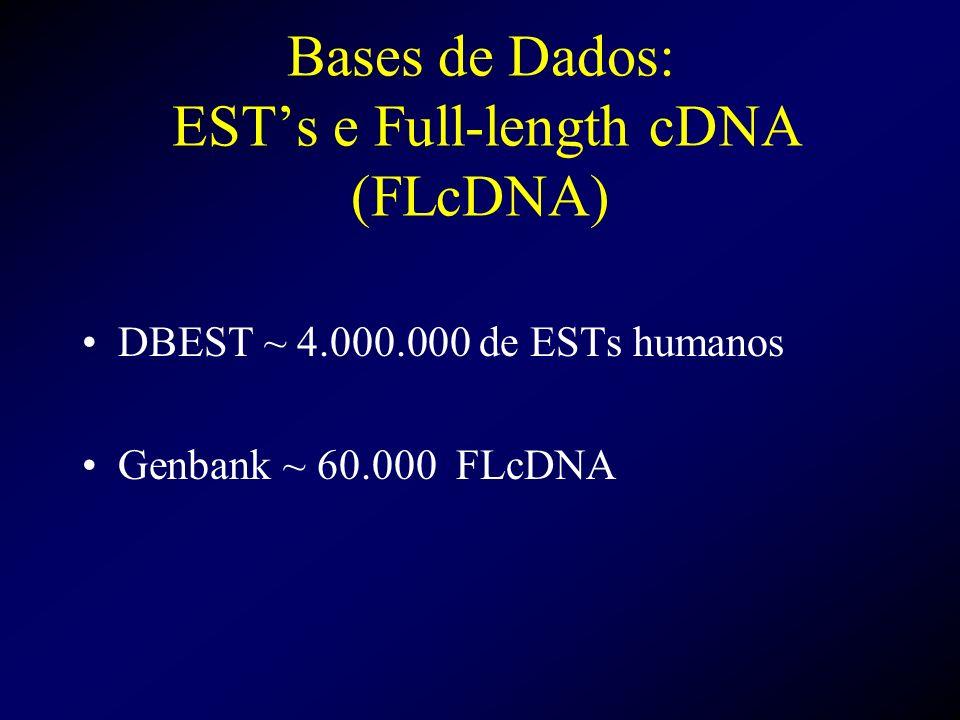Bases de Dados: ESTs e Full-length cDNA (FLcDNA) DBEST ~ 4.000.000 de ESTs humanos Genbank ~ 60.000 FLcDNA