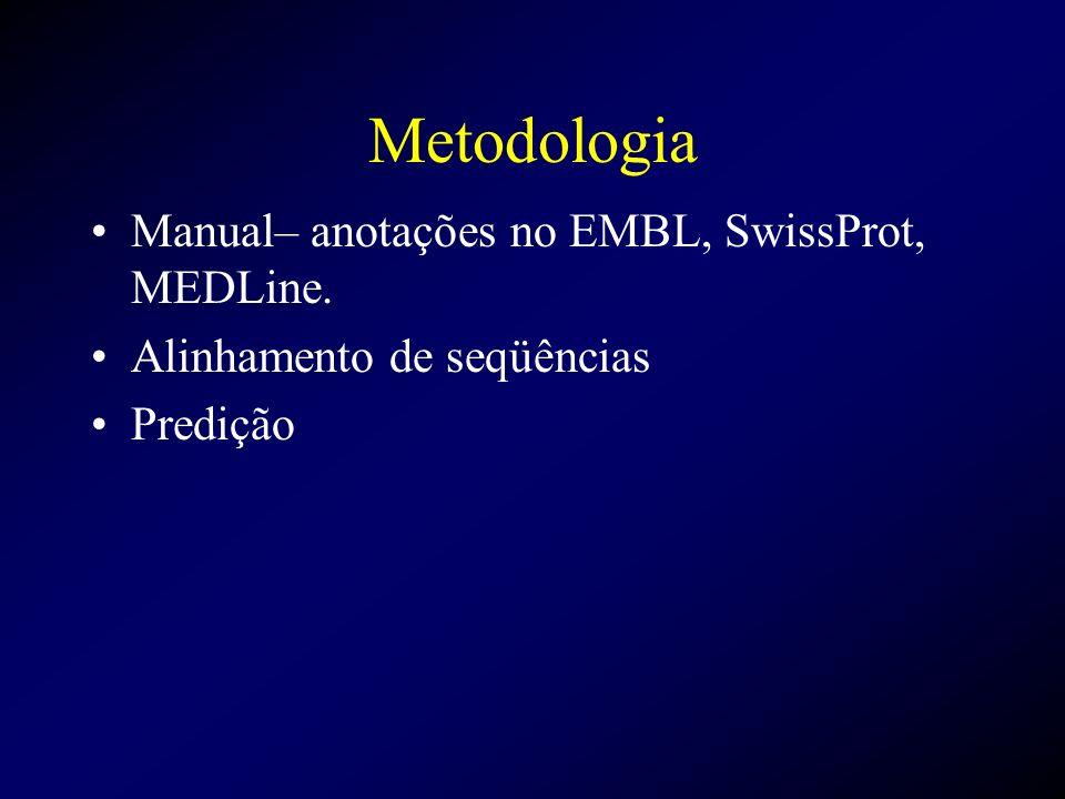 Metodologia Manual– anotações no EMBL, SwissProt, MEDLine. Alinhamento de seqüências Predição