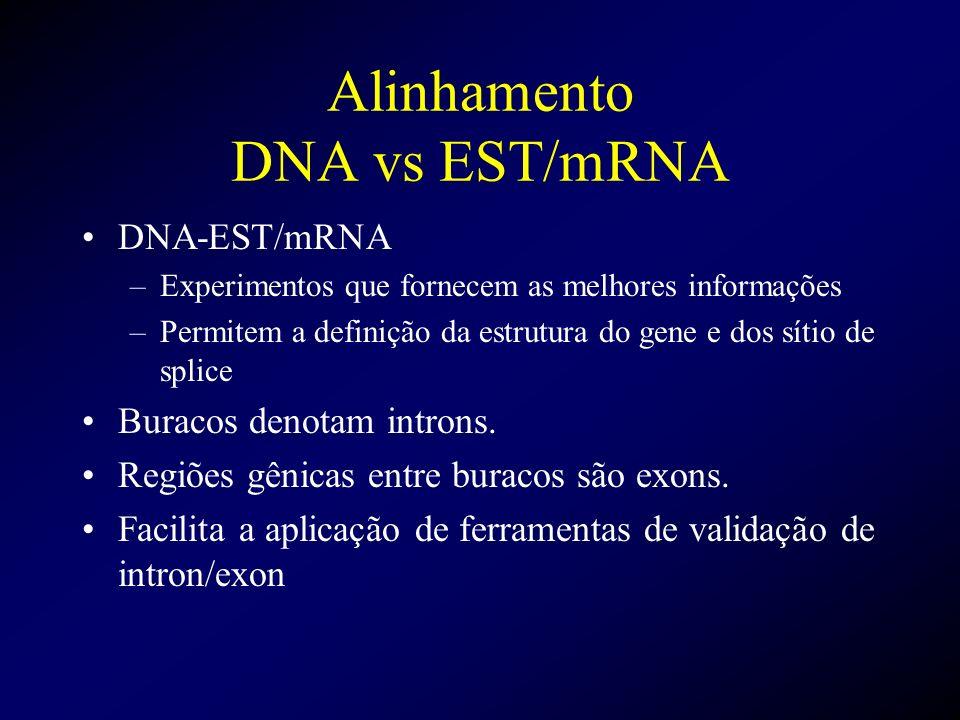 Alinhamento DNA vs EST/mRNA DNA-EST/mRNA –Experimentos que fornecem as melhores informações –Permitem a definição da estrutura do gene e dos sítio de
