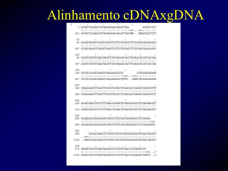 Alinhamento cDNAxgDNA 0. :. :. :. :. : 1 ATGGTTCAGGACTGTGGAAGAGACAAGCTTAA ATGATTTCT                                 >>>...>>>          201 ATGGCTCAGGA
