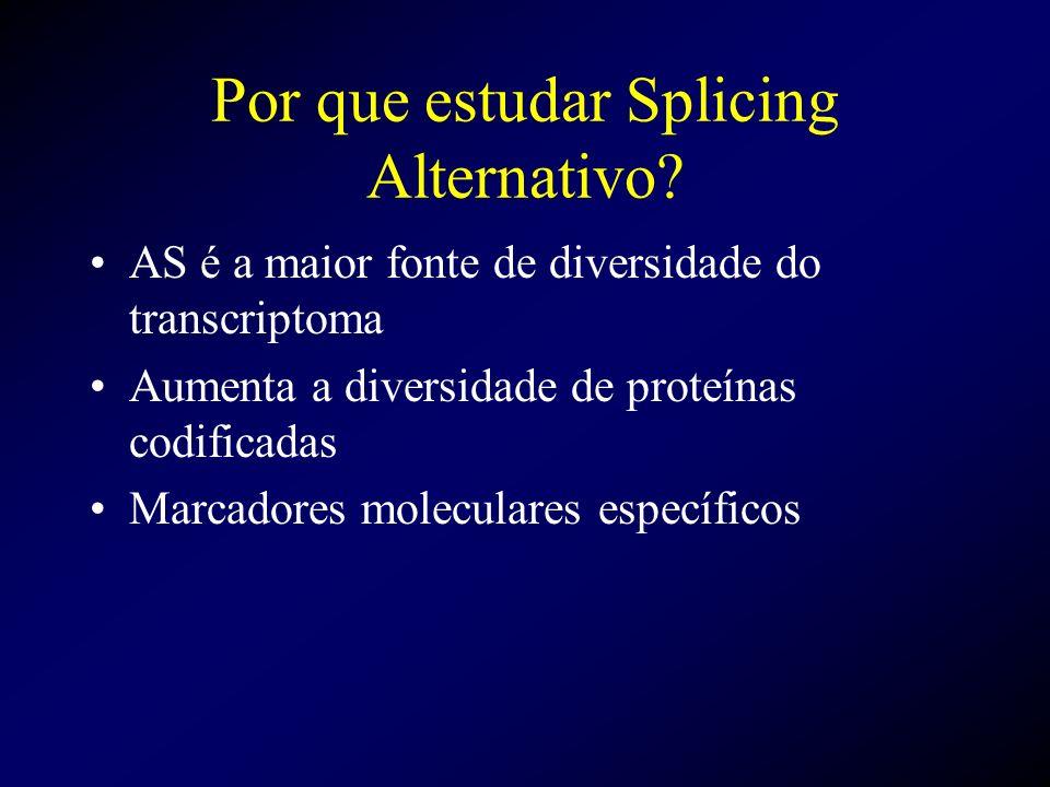 Por que estudar Splicing Alternativo? AS é a maior fonte de diversidade do transcriptoma Aumenta a diversidade de proteínas codificadas Marcadores mol