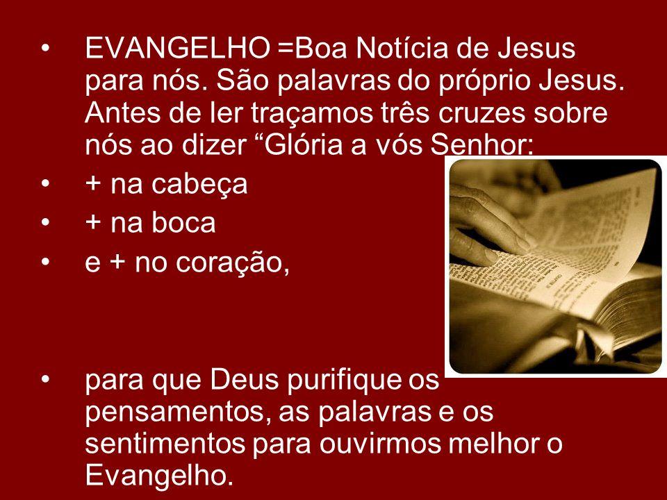 EVANGELHO =Boa Notícia de Jesus para nós. São palavras do próprio Jesus. Antes de ler traçamos três cruzes sobre nós ao dizer Glória a vós Senhor: + n