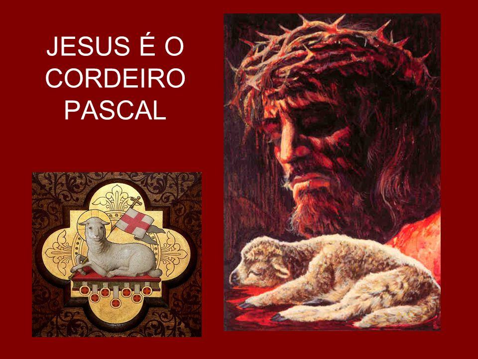 Ato Penitencial Senhor tende piedade ( compaixão ) de nós Confesso a Deus...