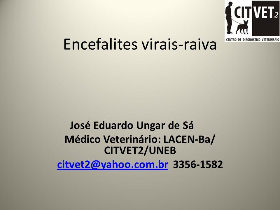 Encefalites virais-raiva José Eduardo Ungar de Sá Médico Veterinário: LACEN-Ba/ CITVET2/UNEB citvet2@yahoo.com.brcitvet2@yahoo.com.br 3356-1582