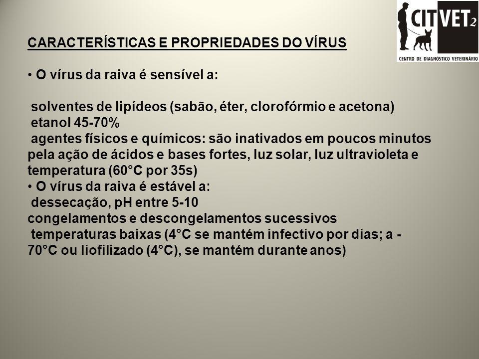 Etiologia Fam: Rhabdoviridae Gênero: Lyssavírus Espécie: Rabies vírus Genotipo 1 / Sorotipo 1 - Rabies virus (RABV) Genotipo 2 / Sorotipo 2 - Lagos bat virus(LBV) Genotipo 3 / Sorotipo 3 - Mokola virus(MOKV) Genotipo 4 / Sorotipo 4 – Duvenhage virus (DUVV) Genotipo 5 / Sorotipo 5 - European bat lyssavirus 1 (EBL-1) Genotipo 6 - European bat lyssavirus 2 (EBL-2) Genotipo 7 - Australian bat lyssavirus (ABLV) Genotipo 8 .