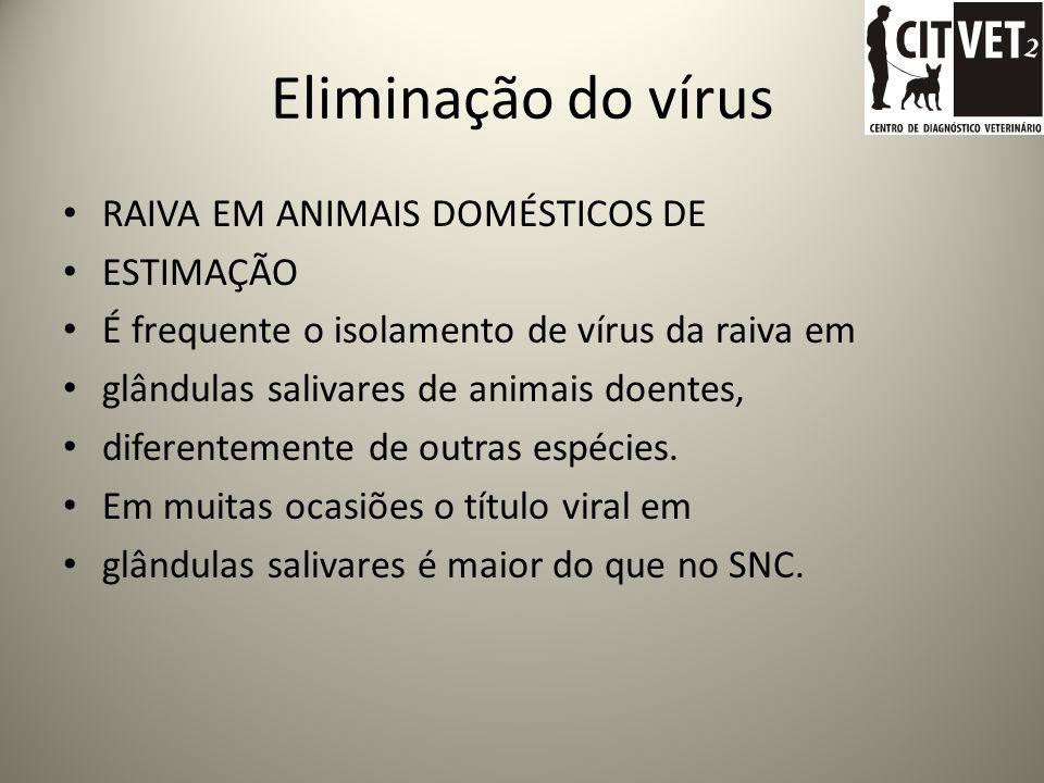 Eliminação do vírus RAIVA EM ANIMAIS DOMÉSTICOS DE ESTIMAÇÃO É frequente o isolamento de vírus da raiva em glândulas salivares de animais doentes, diferentemente de outras espécies.