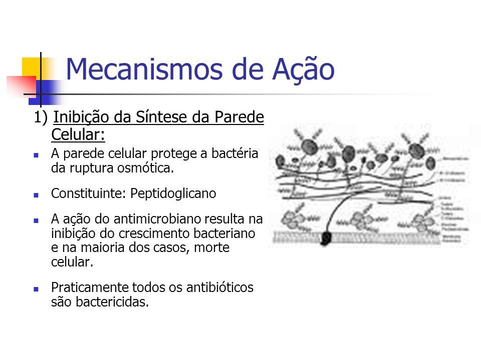 Mecanismos de Ação 1) Inibição da Síntese da Parede Celular: A parede celular protege a bactéria da ruptura osmótica. Constituinte: Peptidoglicano A a