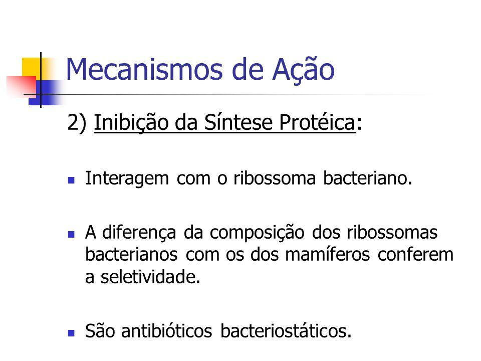 Mecanismos de Ação 2) Inibição da Síntese Protéica: Interagem com o ribossoma bacteriano. A diferença da composição dos ribossomas bacterianos com os