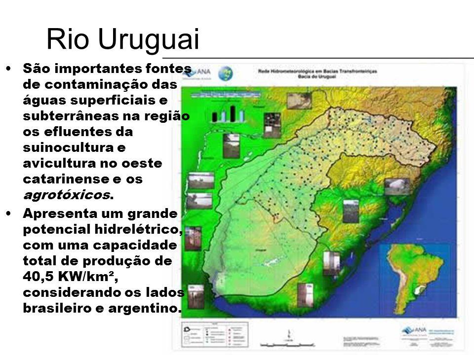 Rio Uruguai São importantes fontes de contaminação das águas superficiais e subterrâneas na região os efluentes da suinocultura e avicultura no oeste