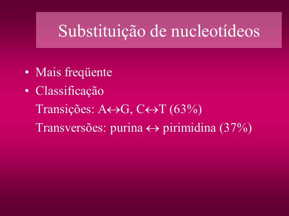 Substituição de nucleotídeos Mais freqüente Classificação Transições: A G, C T (63%) Transversões: purina pirimidina (37%)