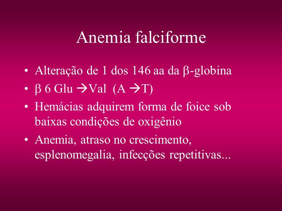 Anemia falciforme Alteração de 1 dos 146 aa da -globina 6 Glu Val (A T) Hemácias adquirem forma de foice sob baixas condições de oxigênio Anemia, atra