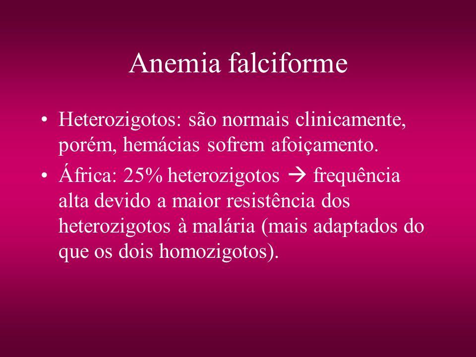 Anemia falciforme Heterozigotos: são normais clinicamente, porém, hemácias sofrem afoiçamento. África: 25% heterozigotos frequência alta devido a maio