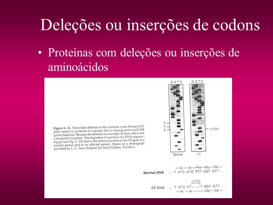 Deleções ou inserções de codons Proteínas com deleções ou inserções de aminoácidos