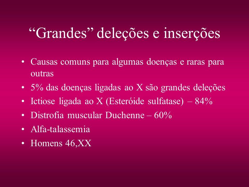 Grandes deleções e inserções Causas comuns para algumas doenças e raras para outras 5% das doenças ligadas ao X são grandes deleções Ictiose ligada ao