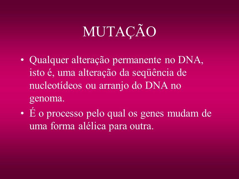 MUTAÇÃO Qualquer alteração permanente no DNA, isto é, uma alteração da seqüência de nucleotídeos ou arranjo do DNA no genoma. É o processo pelo qual o