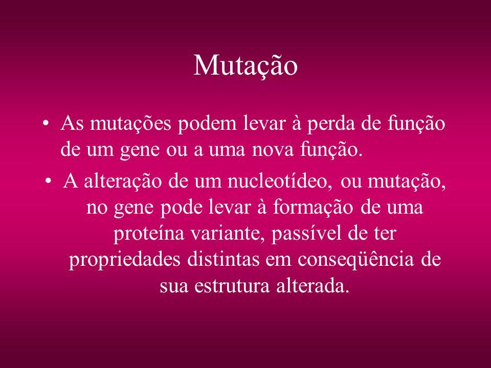 Mutação As mutações podem levar à perda de função de um gene ou a uma nova função. A alteração de um nucleotídeo, ou mutação, no gene pode levar à for