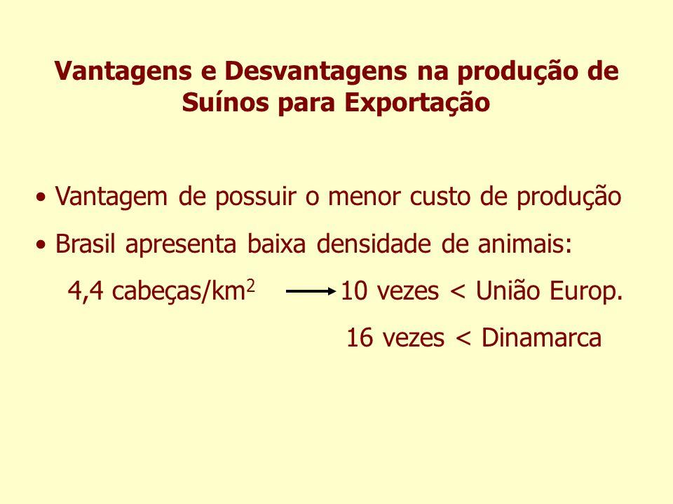 Vantagens e Desvantagens na produção de Suínos para Exportação Vantagem de possuir o menor custo de produção Brasil apresenta baixa densidade de anima
