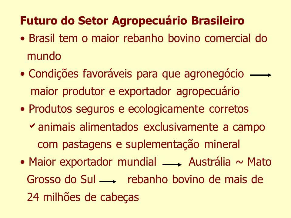 Futuro do Setor Agropecuário Brasileiro Brasil tem o maior rebanho bovino comercial do mundo Condições favoráveis para que agronegócio maior produtor