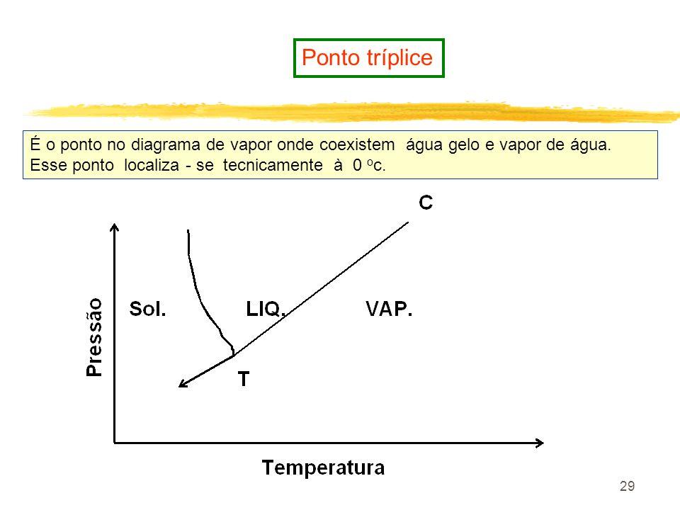 28 Liofilização É um processo de remoção de umidade que combina congelamento, sublimação de gelo e, secagem a vácuo Apresenta varias vantagens sobre o