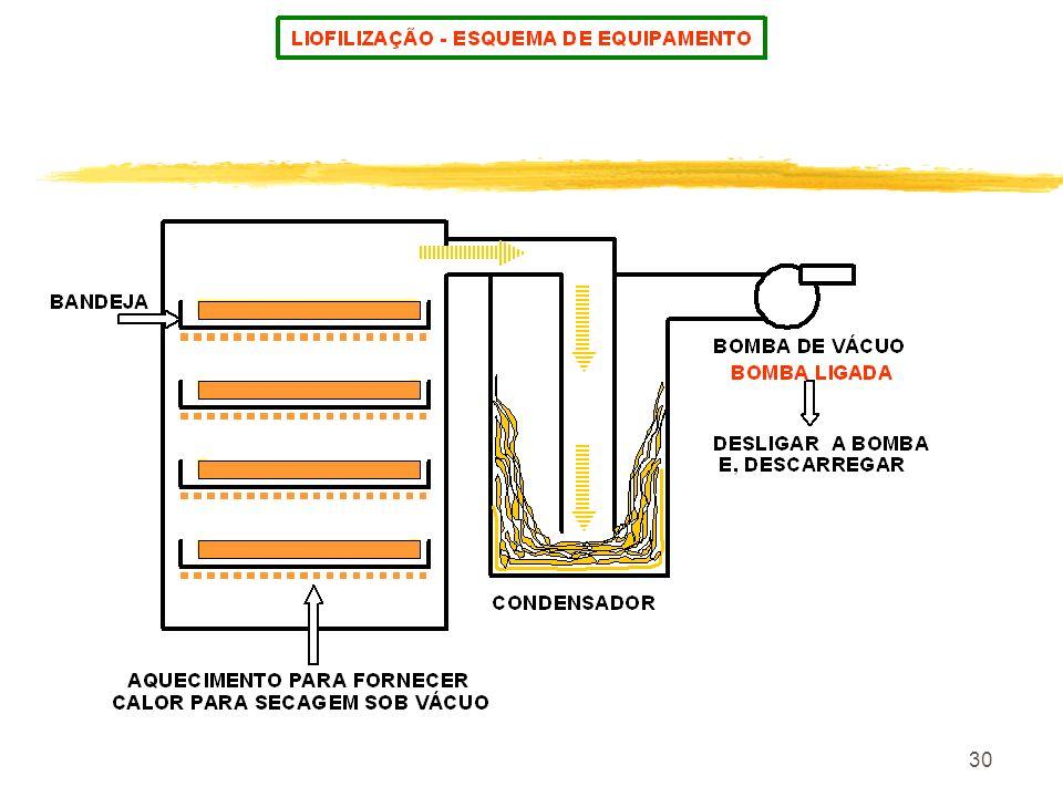 29 É o ponto no diagrama de vapor onde coexistem água gelo e vapor de água. Esse ponto localiza - se tecnicamente à 0 o c. Ponto tríplice