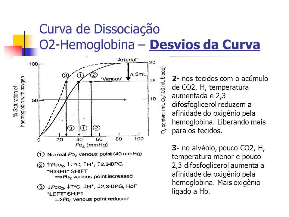 Curva de Dissociação O2-Hemoglobina – Desvios da Curva 2- nos tecidos com o acúmulo de CO2, H, temperatura aumentada e 2,3 difosfoglicerol reduzem a afinidade do oxigênio pela hemoglobina.