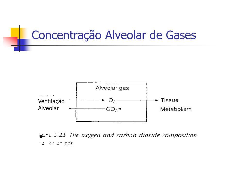 Concentração Alveolar de Gases Ventilação Alveolar