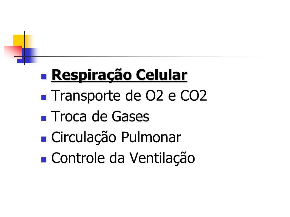 Respiração Celular Respiração Celular Transporte de O2 e CO2 Troca de Gases Circulação Pulmonar Controle da Ventilação