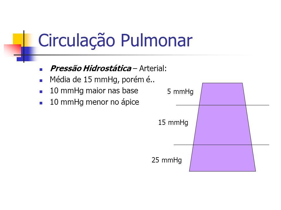 Circulação Pulmonar Pressão Hidrostática – Arterial: Média de 15 mmHg, porém é..